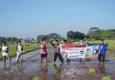 Bangkitkan Minat Bertani, 30 Pemuda Klaten Melumpur di Acara Tandur Bareng